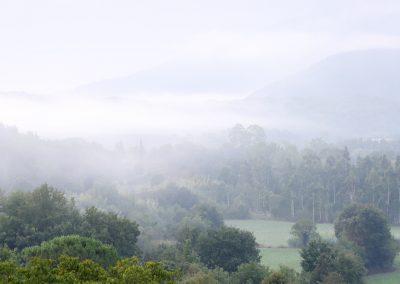 niebla-amer