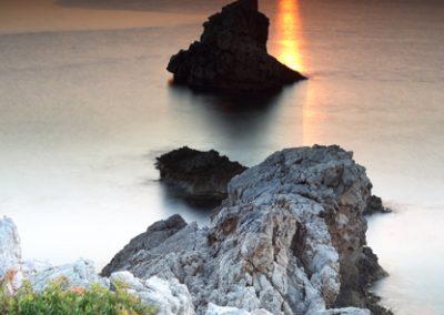 jordi-mestrich-roca-plantas-amanecer