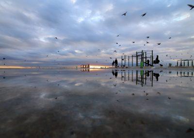 reflejos-pajaros-nubes-amanecer