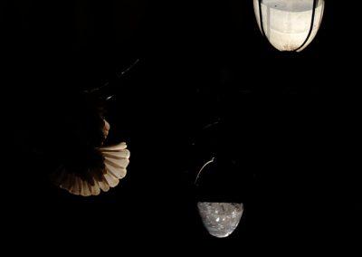 jordi-mestrich-introspecciones-ocuridad-14