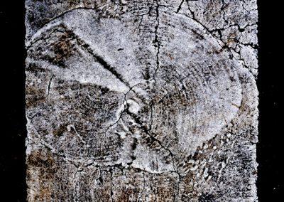 11-jordi-mestrich-artistificaciones-contemporaneas-07